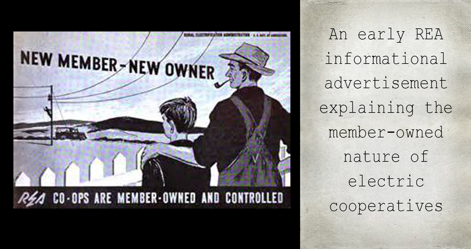REA Informational Poster on Member-Owners