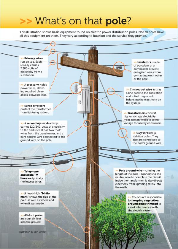 What's On the Utility Pole